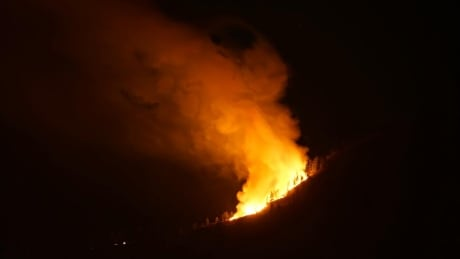 Up to 100 homes evacuated near Vernon due to wildfire