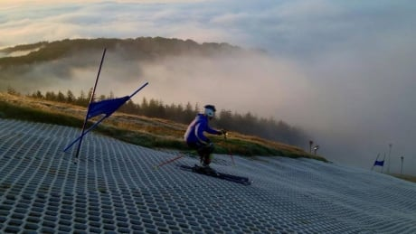 Hitting the plastic slopes: Climate change pushes ski resorts to 'weatherproof'