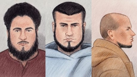 Ashton Larmond, Carlos Larmond, Suliman Mohamed plead guilty court sketches