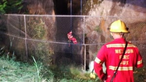 Pair extracted from precarious 50-foot ravine in Nelson, B.C.