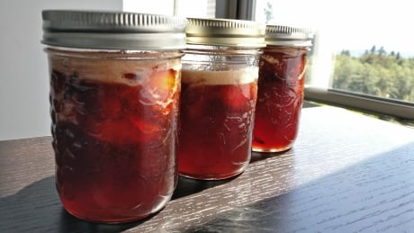 Jamming out: a beginners guide to homemade plum jam