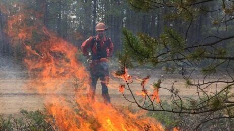 Cooler temperatures help with mop up of Okanagan Lake fires
