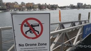 'No Drone Zone' signs posted in Victoria's Inner Harbour