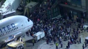 Panic ensues after reports of gunshots at LAX