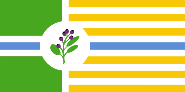 flag designs ideas
