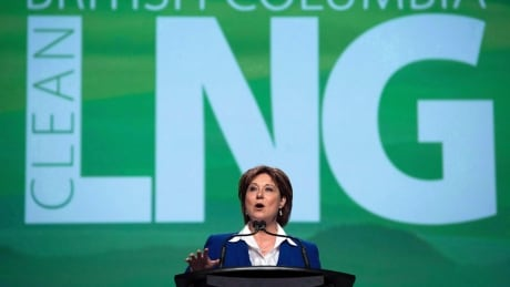 LNG mega-project incompatible with B.C.'s greenhouse gas target, says expert