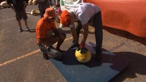 Quebec pumpkin-growing competition goes awry
