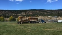 Logging truck at Forestry Week in Merritt