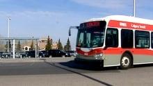 Bus stop sex assault