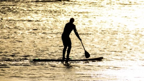 A West Coast crime? Thief tries to flee by paddleboard, bicycle