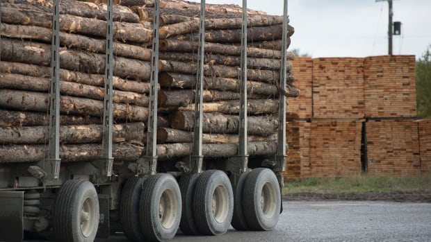 US, Canada to continue lumber trade talks as deadline passes