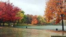 Montreal fall autumn rain