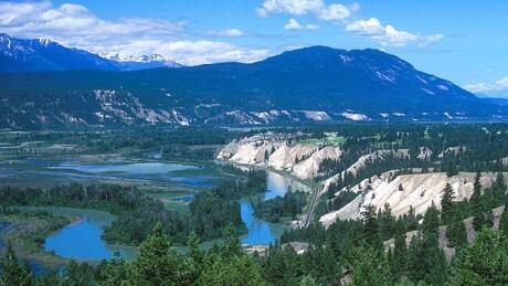 Columbia River wetlands