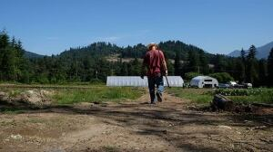 Convicts, victims work to heal old wounds on B.C. farm