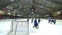 Quebec Minor Hockey