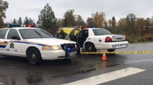 Discovery of Langley body 'a gruesome event,' says homicide team