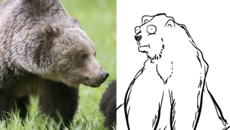 Grizzly and Oatmeal headline image