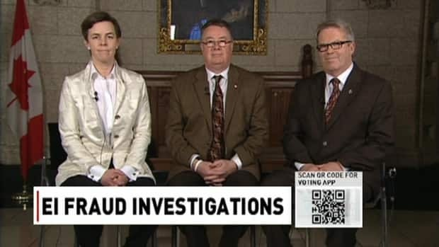 EI fraud investigations