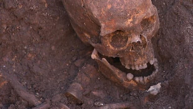 Canadian's DNA helps ID King Richard III's bones