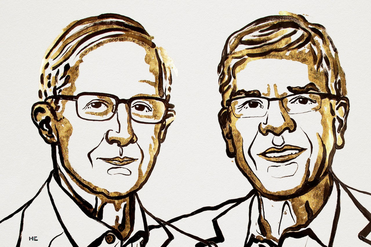 Paul Romer Nobel Prize in economics: endogenous growth theory photo