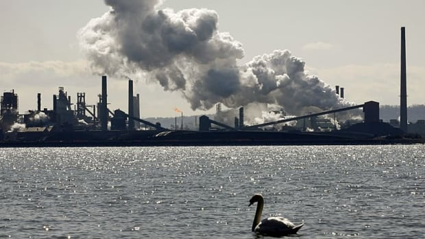 In this file photo, a swan floats on Burlington Bay with Hamilton's industrial skyline in the background.