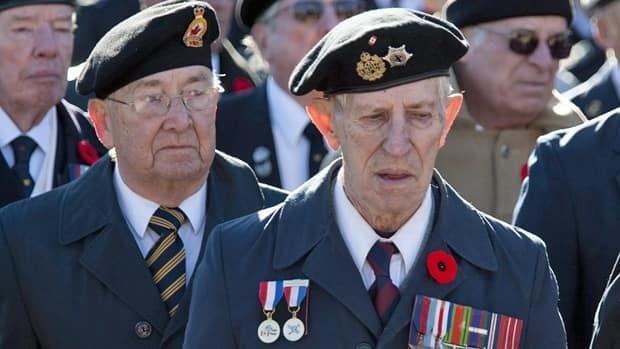 Some Canadian veterans are not receiving support as they live on the streets and go unnoticed by Veterans Affairs Canada.