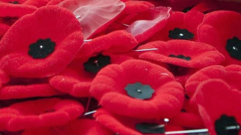Man arrested on Remembrance Day for stealing poppy boxes: Niagara police