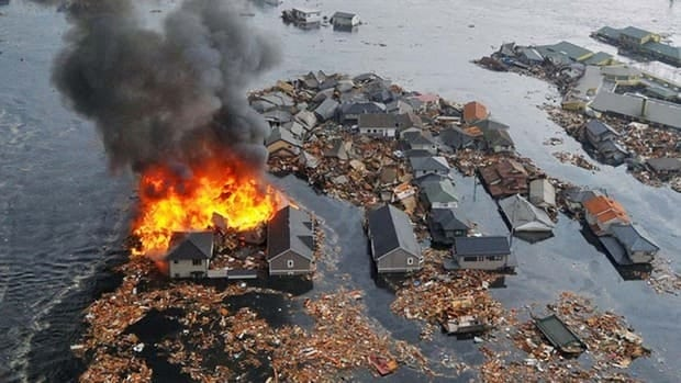 Millions of tonnes of debris were swept out into the Pacific Ocean and are expected to eventually drift ashore on the west coast of North America, following the 2011 tsunami in Japan.