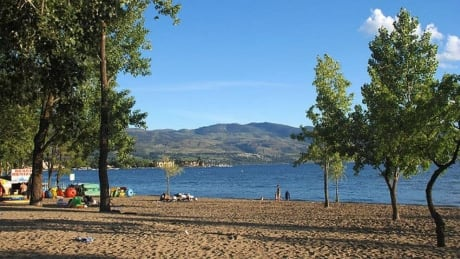Where is the poop in Vernon's water coming from? Genetic testing aims to find out