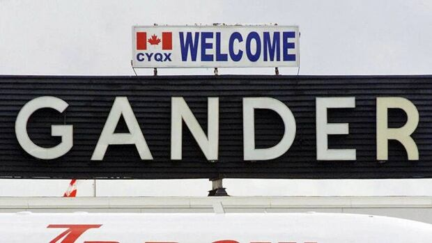 A moose which jumped a fence onto the Gander International Airport airfield was, contrary to the airport's sign, not welcome for safety reasons.