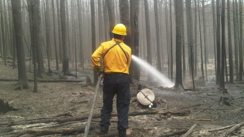 21-hectare wildfire outside Miramichi brought under control