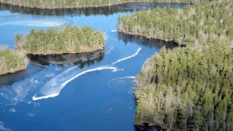 ns-bowater-community-forest_852x479_1
