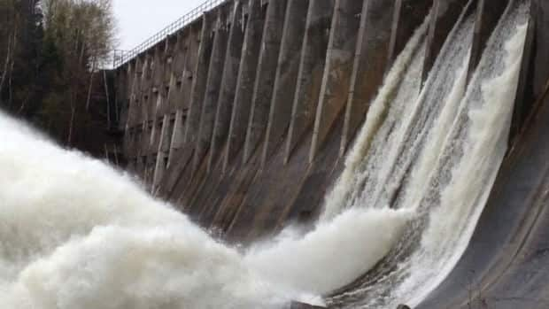 Deer Lake Power released water from three gates on its main dam on Friday.