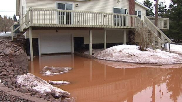 Kelly Cole and her boyfriend woke up to almost two metres of water in the basement.
