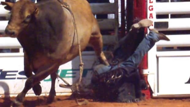 Cowboy Stomped By Bull In Calgary Stampede Rodeo