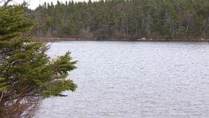 nl-rezori-south-pond-20130430
