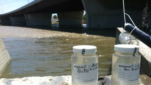 Deadly E. coli found in Calgary floodwater