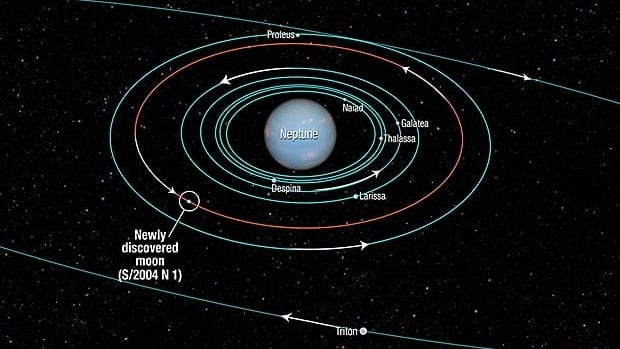 This diagram shows the orbits of several moons located close to the planet Neptune and the outer moon Triton. Except for Triton, known since Neptune's discovery in 1846, and the new moon S/2004 N 1, they were discovered in 1989 by NASA's Voyager 2 spacecraft.