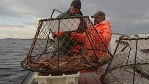 nl-fishing-20130528