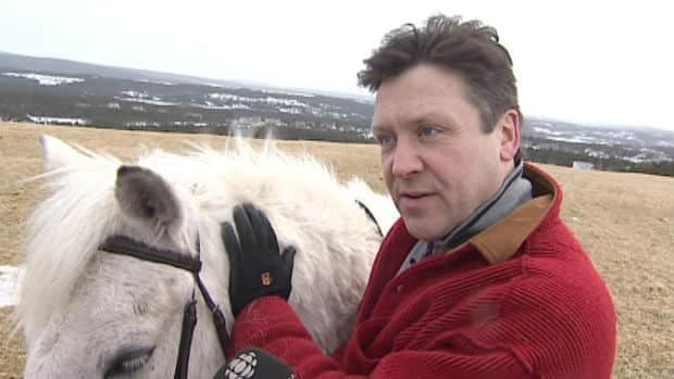 Peter Halley is a member of the Newfoundland Pony Society. He worries the breed may not be around for future generations.