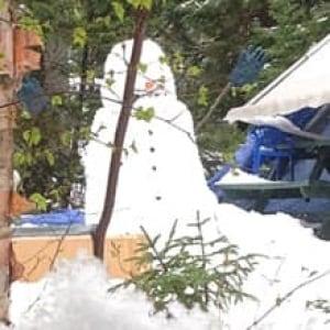 nl-snowman-20130521