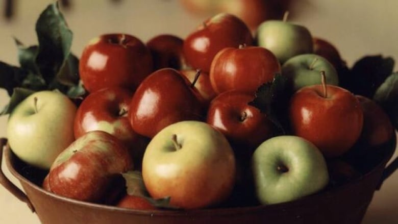 NZ's bumper apple crop may be partly lost due to worker shortage