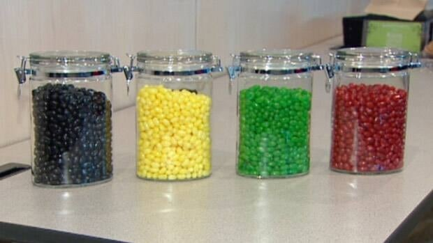 Edmonton held a mock jellybean election last fall to test online voting technology.