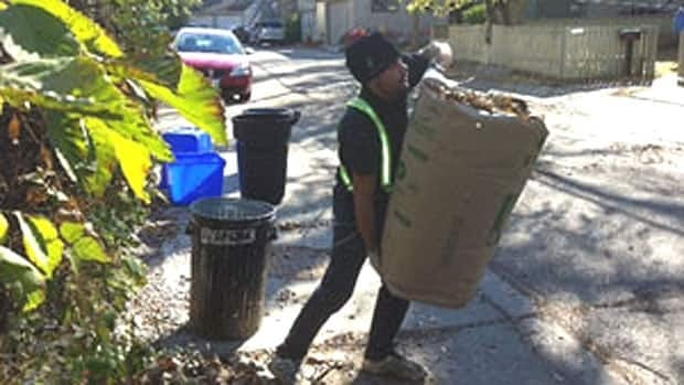 The city will begin picking up yard waste on every garbage collection day starting next week.