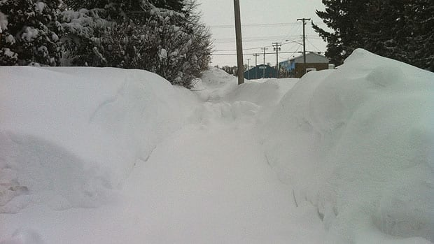The communmity of Miami is digging out from 56 centimetres of snow that fell during Monday's storm.
