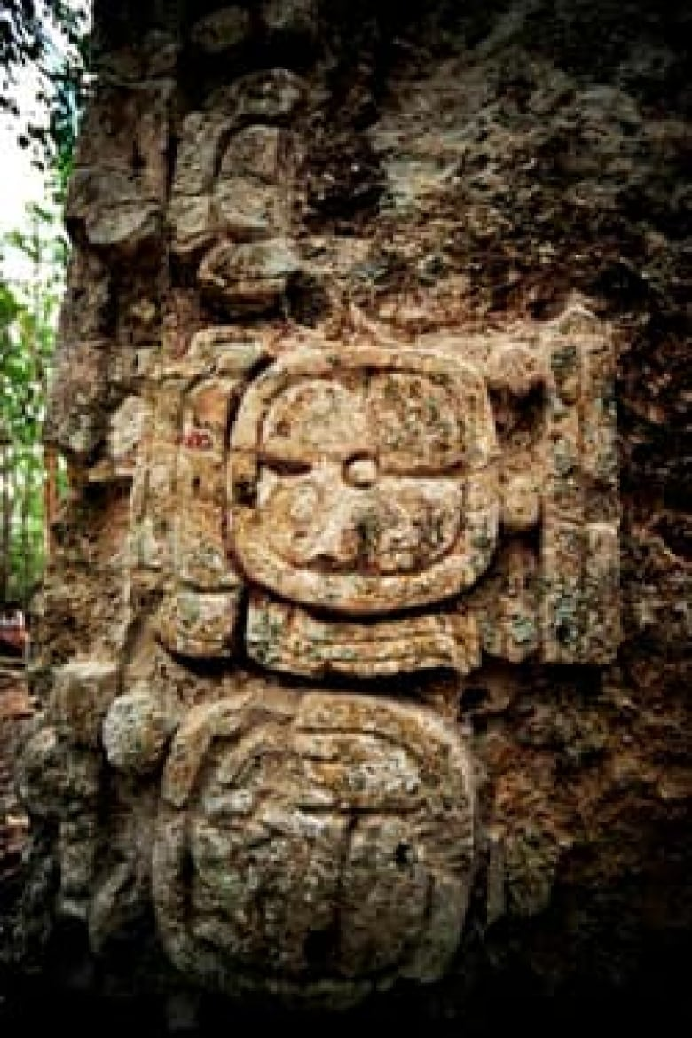 Ancient Maya city found in Mexican nature reserve