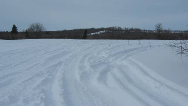 Snowmobile tracks in the snow despite no permission from the owner.