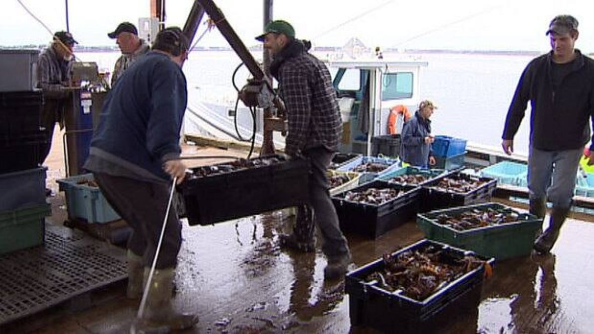 Maritime seafood processors fear worker shortage will hurt for Lobster fishing california