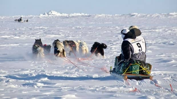 A team races in the 2013 Ivakkak sled dog race in Nunavik on Tuesday.