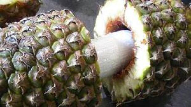 mi-cbsa-pineapple-02014275